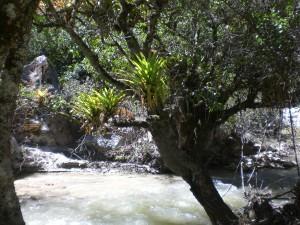 Landschaft Santa Cruz Trek zum Basecamp
